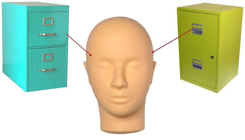 Left and right filing cabinets, representing the left and right temporal lobes.