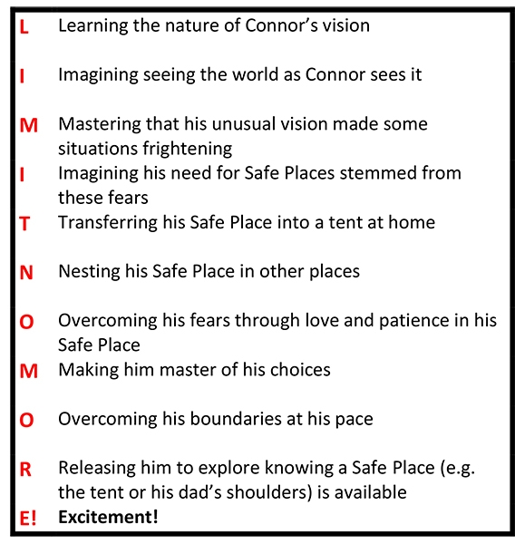 Limit No More! The 10 steps of Connor's journey from fear to freedom.