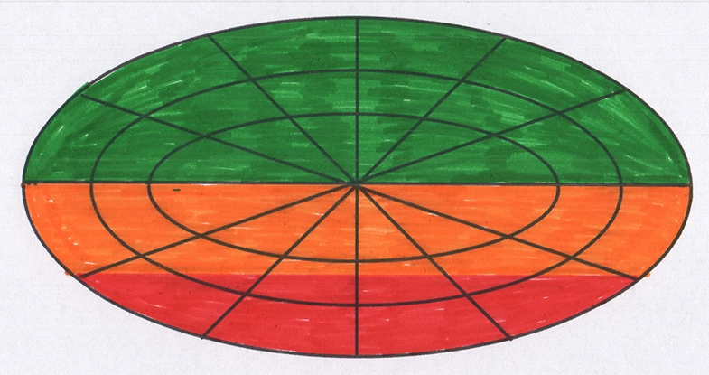 From what we have been told, we might expect Connor's visual field diagram to look like this