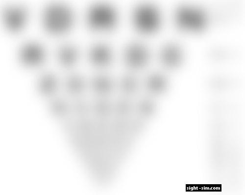 Visual Acuity 6/120 (or 20/400 1.3 LogMAR)