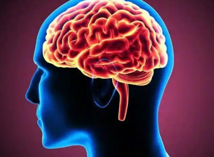 It is estimated that 40% of your brain is dedicated to visual processing.