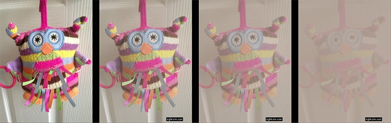 High-contrast owl toy, as it would be seen by someone with typical vision (left image) and mild to severe reduced contrast sensitivity.