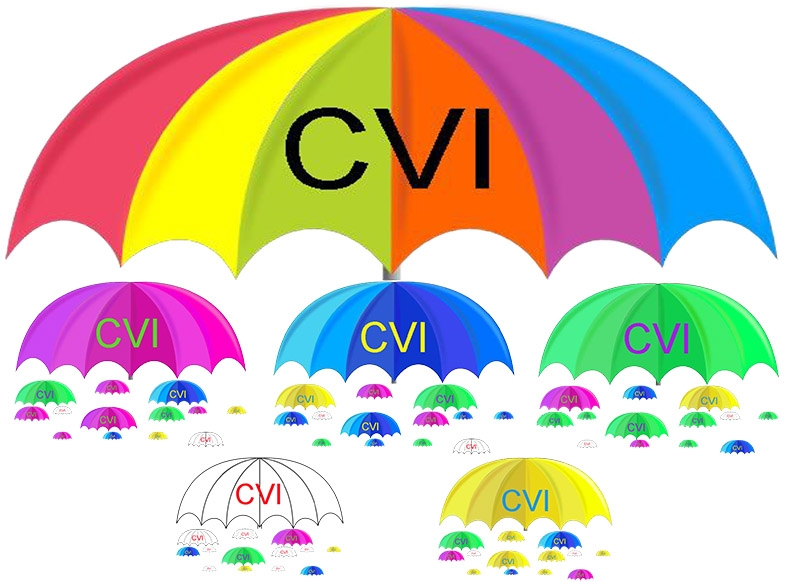 CVI is an umbrella term for many visual impairments that each have many ranges.