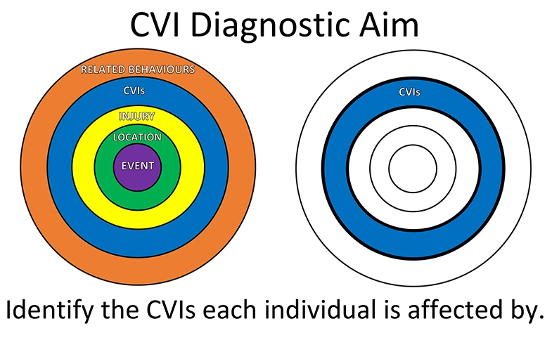 The aim of the diagnosis for CVI is to correctly identify which CVIs the individual is affected by, often there are several.