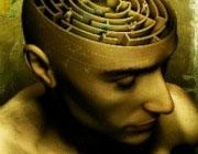 The Laboratory for Visual Neuroplasticity, Harvard Medical School