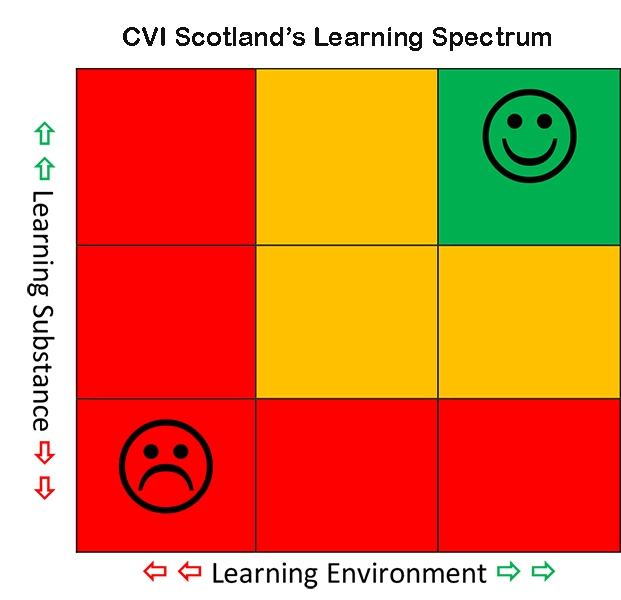 Ways to understand and measure the effectiveness of the learning environment and learning opportunities for the person with CVI.