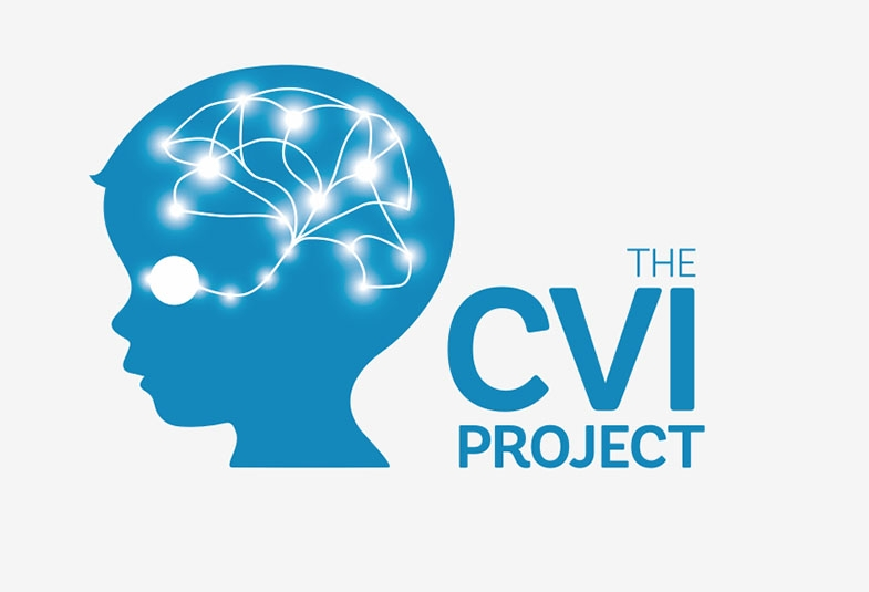 Link to survey CVI project would like parents, carers and professionals in UK & Eire to complete , before 4 February - please share.