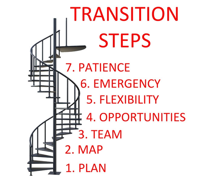 Our 7 Step suggested approach to planning transitions and changes, minor and major, for people with CVI.