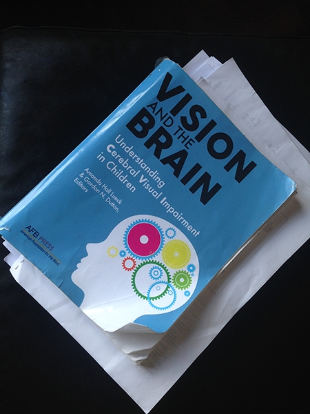 photograph of the text book vision and the brain