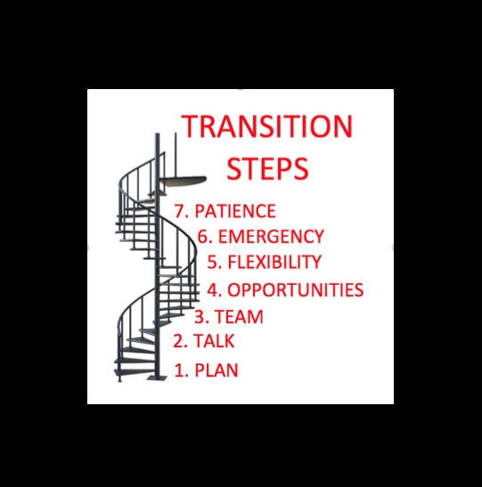 spiral staircase with transition steps, from the bottom upwards 1 plan 2 talk 3 team 4 opportunities 5 flexibility 6 emergency 7 patience